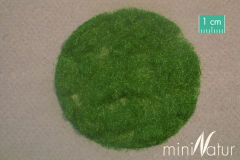 miniNatur Gras-Flock 2mm - Sommer - 50g - H0 (1:87) - (002-22)