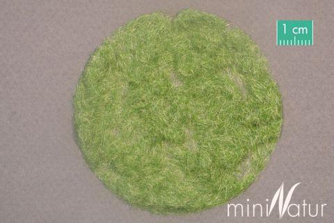 miniNatur Gras-Flock 2mm - Frühherbst - 50g - H0 (1:87) - (002-23)