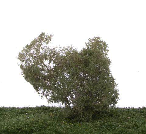 Silhouette Filigranbüsche Birke - Sommer - N-Z (1:160-220) - (101-12S)