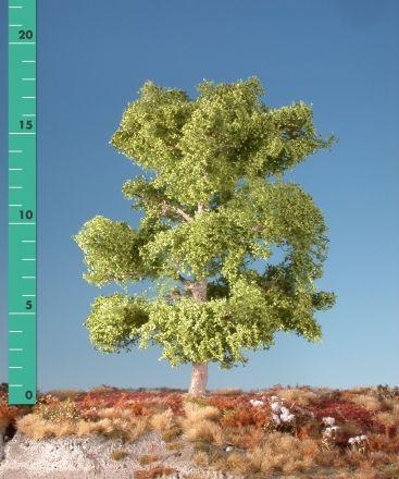 Silhouette Buche - Frühling - 0 (< ca. 8cm) - N-Z (1:160-220) - (120-01)