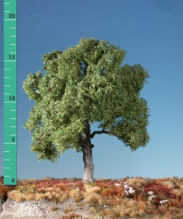 Silhouette Buche - Sommer - 0 (< ca. 8cm) - N-Z (1:160-220) - (120-02)