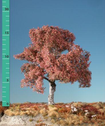 Silhouette Buche - Spätherbst - 1 (ca. 10-13cm) - N-Z (1:160-220) - (120-14)
