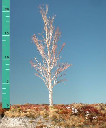 Silhouette Espe - Kahl - 2 (ca. 15-20cm) - H0 (1:87) - (215-20)