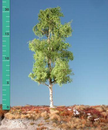Silhouette Espe - Frühling - 2 (ca. 15-20cm) - H0 (1:87) - (215-21)