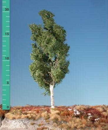 Silhouette Espe - Sommer - 2 (ca. 15-20cm) - H0 (1:87) - (215-22)