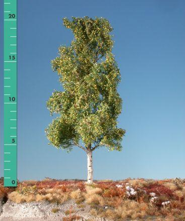Silhouette Espe - Frühherbst - 2 (ca. 15-20cm) - H0 (1:87) - (215-23)