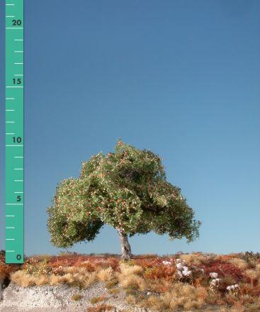 Silhouette Apfelbaum - Frühherbst - 1 (ca. 10-13cm) - H0 (1:87) - (226-13)