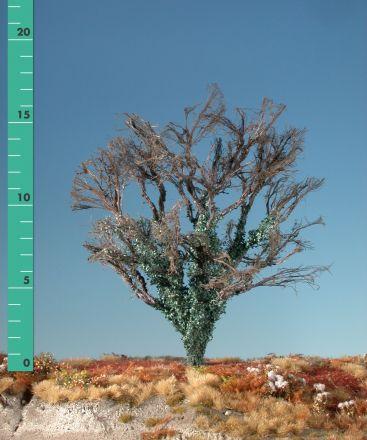 Silhouette Ahorn mit Efeu bewachsen - Kahl - 2 (ca. 15-20cm) - H0 (1:87) - (231-20)