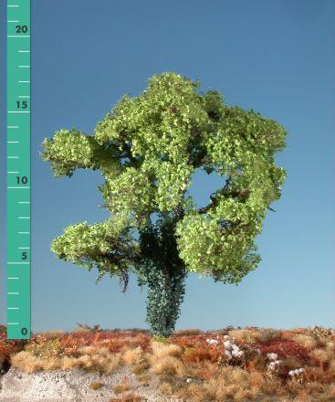 Silhouette Ahorn mit Efeu bewachsen - Frühling - 2 (ca. 15-20cm) - H0 (1:87) - (231-21)