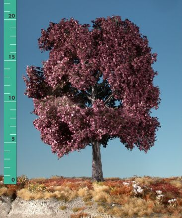 Silhouette Blutahorn - Sommer - 0 (< ca. 8cm) - H0 (1:87) - (232-02)