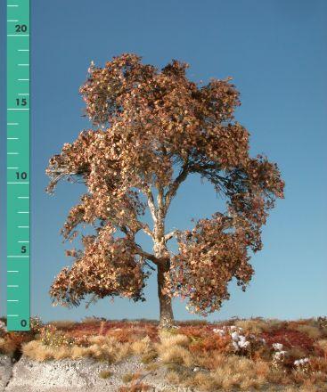 Silhouette Platane - Spätherbst - 1 (ca. 10-13cm) - H0 (1:87) - (233-14)