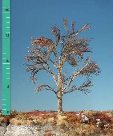 Silhouette Platane - Kahl - 2 (ca. 15-20cm) - H0 (1:87) - (233-20)