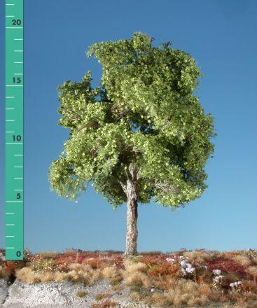 Silhouette Platane - Frühling - 2 (ca. 15-20cm) - H0 (1:87) - (233-21)