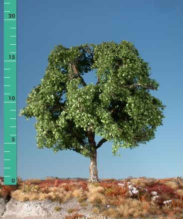 Silhouette Platane - Sommer - 3 (ca. 22-29cm) - H0 (1:87) - (233-32)