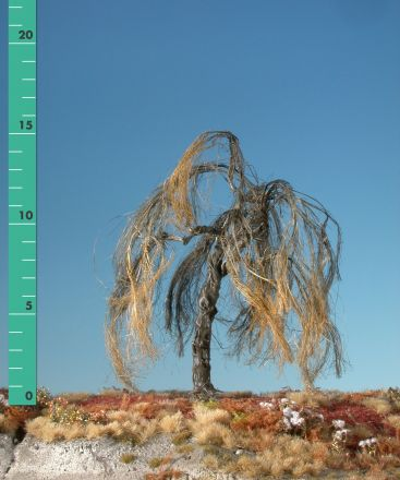 Silhouette Trauerweide - Kahl - 1 (ca. 10-13cm) - H0 (1:87) - (240-10)