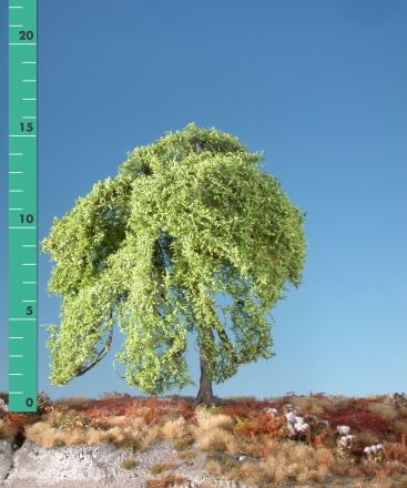 Silhouette Trauerweide - Frühling - 1 (ca. 10-13cm) - H0 (1:87) - (240-11)