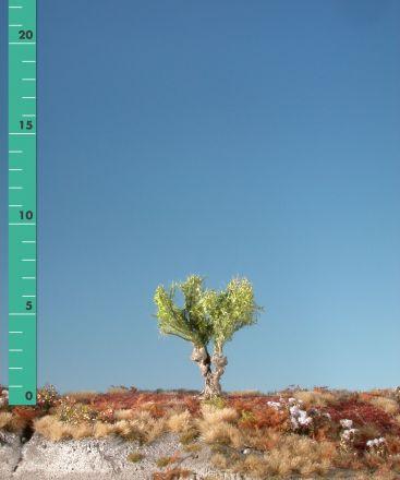 Silhouette Kopfweide - Frühling - 0 (< ca. 8cm) - H0 (1:87) - (241-01)