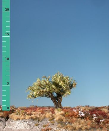 Silhouette Kopfweide - Frühherbst - 0 (< ca. 8cm) - H0 (1:87) - (241-03)