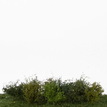 Silhouette Sträucher-Sortiment, Profiline - Frühling -  ca. 3cm - H0 (1:87) - (252-02)