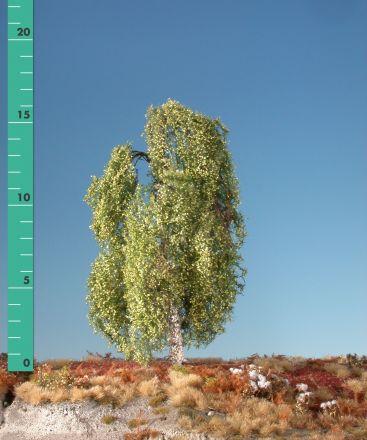 Silhouette Hängebirke - Frühling - ca. 40cm - 0-1 (1:45+) - (311-41)