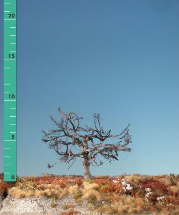 Silhouette Apfelbaum - Kahl - ca. 19cm - 0-1 (1:45+) - (326-20)