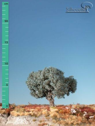 Silhouette Olivenbaum - Sommer - ca. 24cm - 0-1 (1:45+) - (345-32)