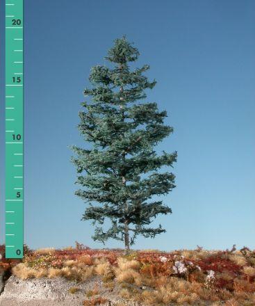 Silhouette Tanne - Sommer - ca. 42cm - 0-1 (1:45+) - (376-42)