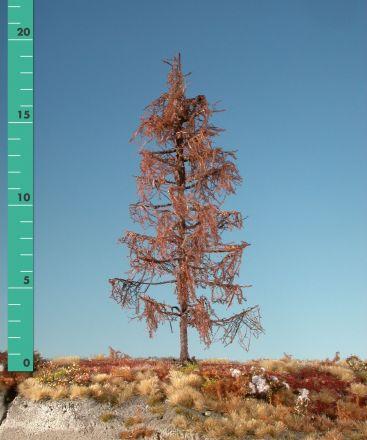 Silhouette Lärche - Kahl - ca. 39cm - 0-1 (1:45+) - (379-40)