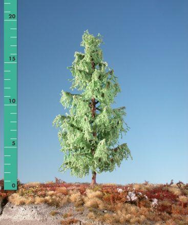 Silhouette Lärche - Frühling - ca. 39cm - 0-1 (1:45+) - (379-41)