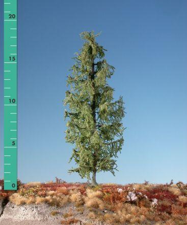 Silhouette Lärche - Sommer - ca. 39cm - 0-1 (1:45+) - (379-42)