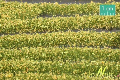 miniNatur Blütenstreifen - Gelb - ca. 336cm - H0 (1:87) - (731-22)