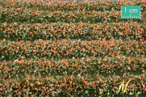 miniNatur Blütenstreifen - Orange - ca. 336cm - H0 (1:87) - (731-25)