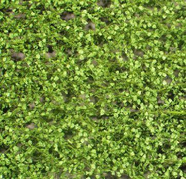 Silhouette Pappellaub - Frühling - ca. 15x4cm - 0-1 (1:45+) - (913-31S)
