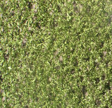 Silhouette Trauerweidenlaub - Sommer - ca. 63x50cm - H0 (1:87) - (940-22G)